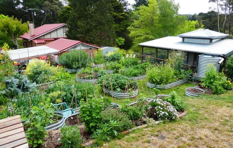 Gardening Blue Mountains 09